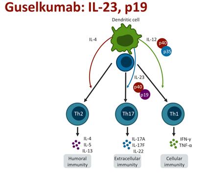 FDA Approves Janssen's Plaque Psoriasis Biologic,Tremfya ...