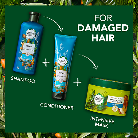 S5 How to Use Argan