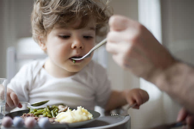 toddler-friendly-food