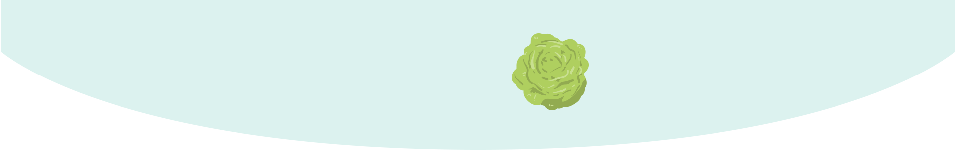 Your baby is the size of a head of lettuce