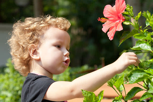Popular Baby Names Inspired By Flowers