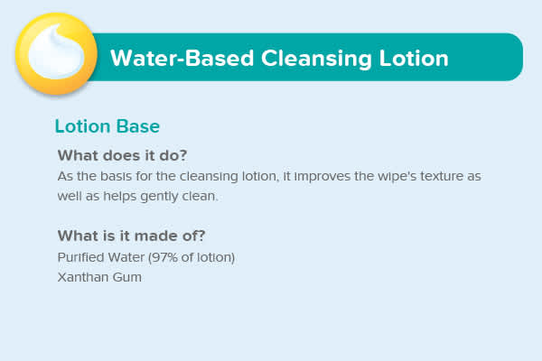 Water-Based Lotion Lotion Base