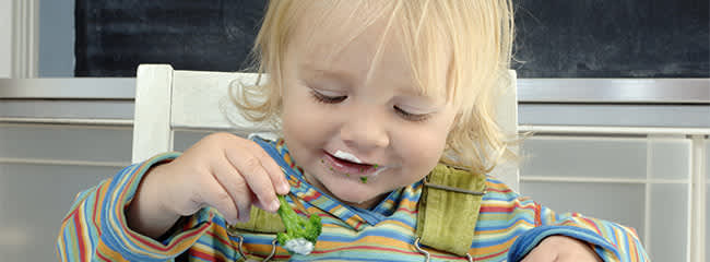 Toddlers are picky eaters