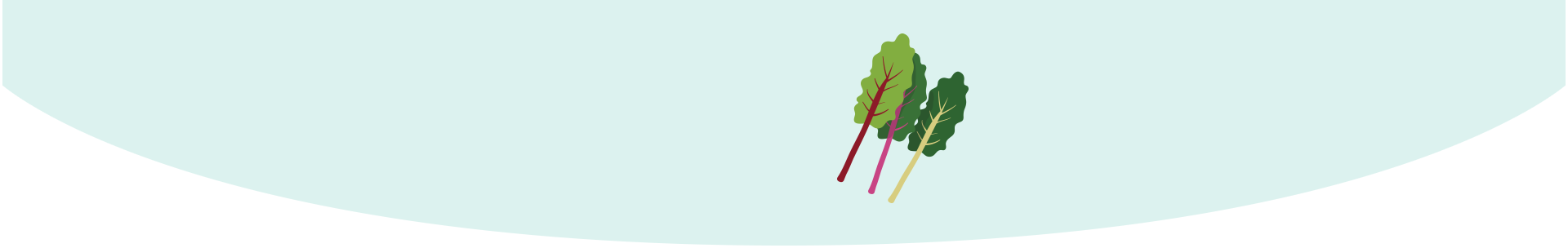 Your baby is the size ofSwiss chard