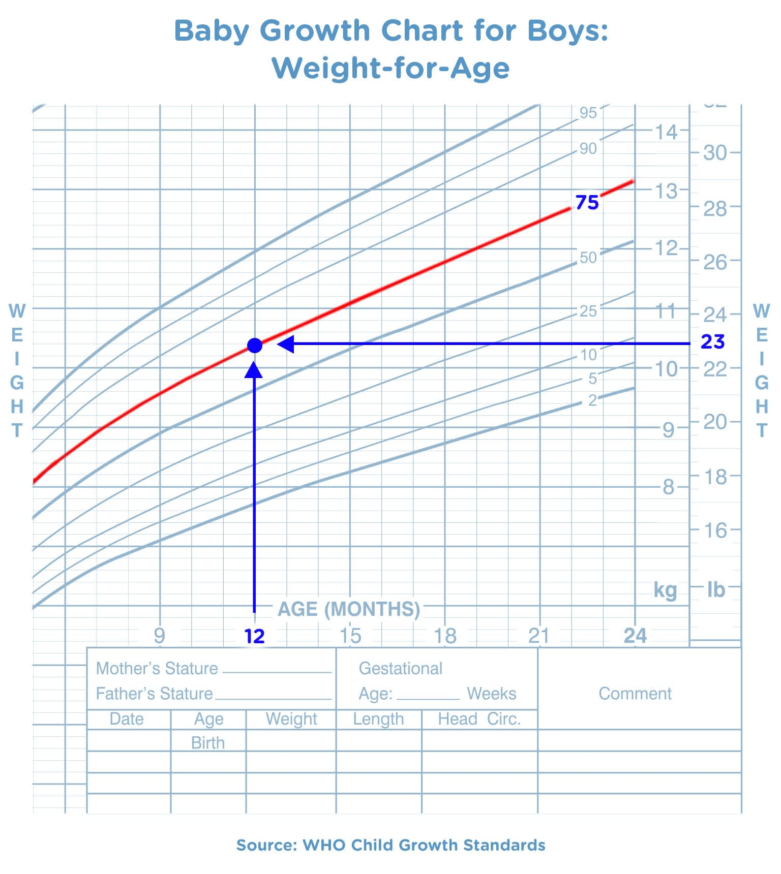 Baby Weight Charts | Pampers