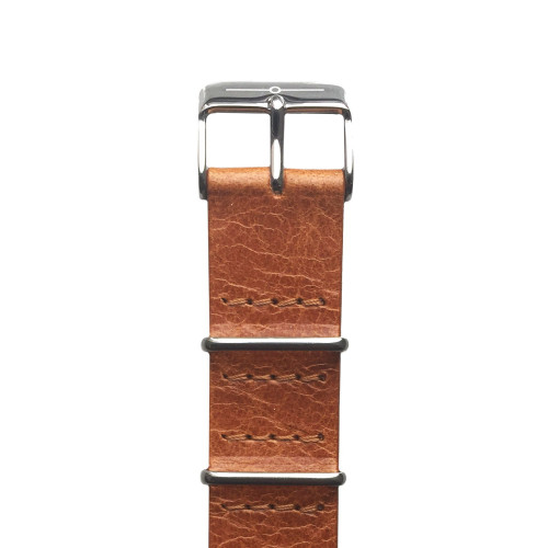 Tan Leather and Steel NATO Image