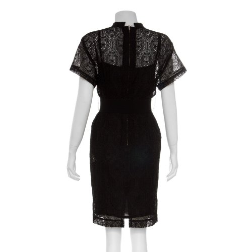 embroidery dress Image