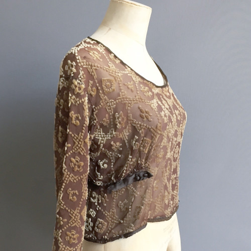 1920's Velvet Flocked Silk Blouse Image