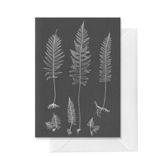Botanical, Ferns, A6 card Image