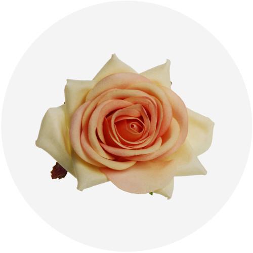Rose Hair Clip Image