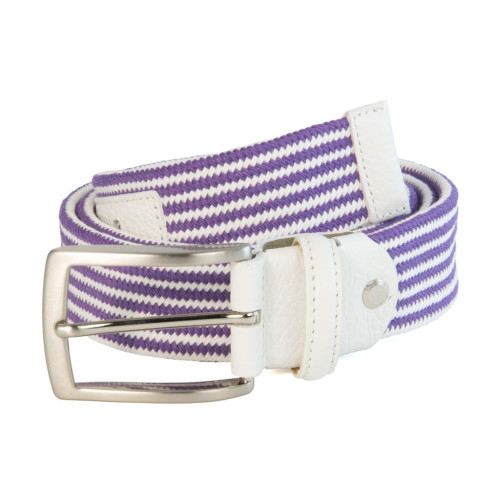 CLUB STRIPED ELASTICATED WOVEN BELT Image