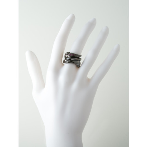 Double claw ring Image
