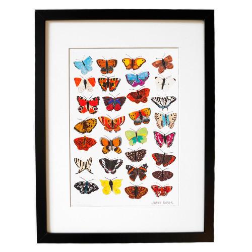 Butterflies Giclée Image