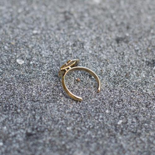 Brass Ohm Toe Ring Image