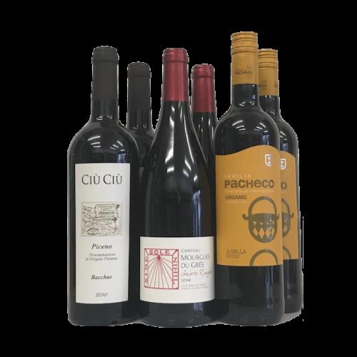 Best value wine case of 6: organic red wine Image