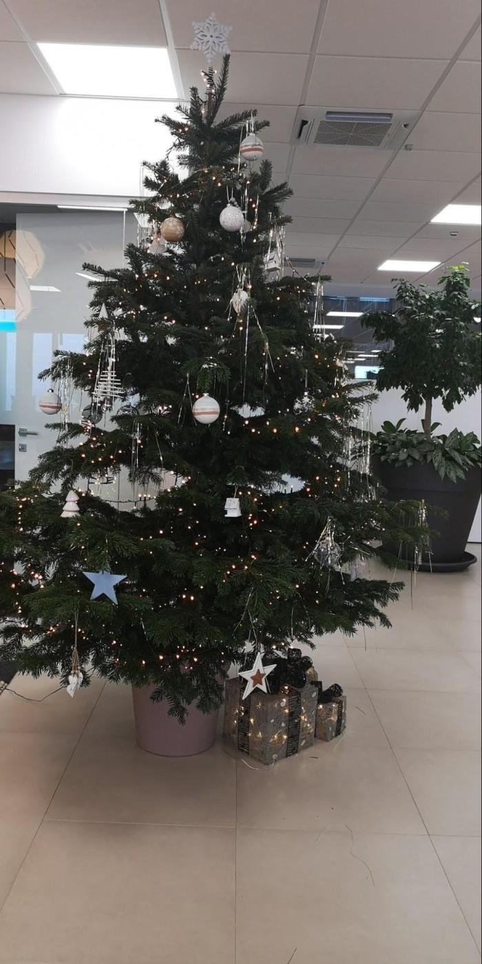 プレインゴーオフィスのクリスマスツリー