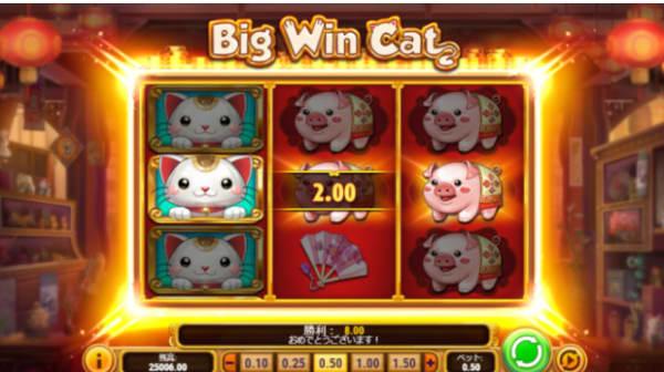 おすすめスロット「Big Win Cat」