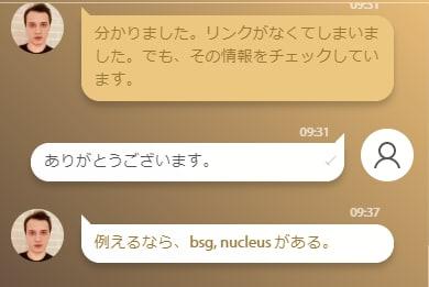 キングビリーカジノの日本語サポート