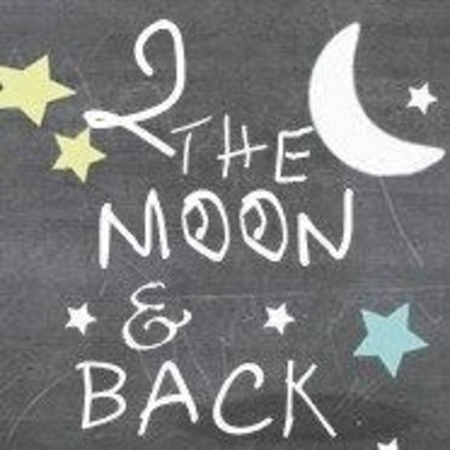 2 the moon & back poster