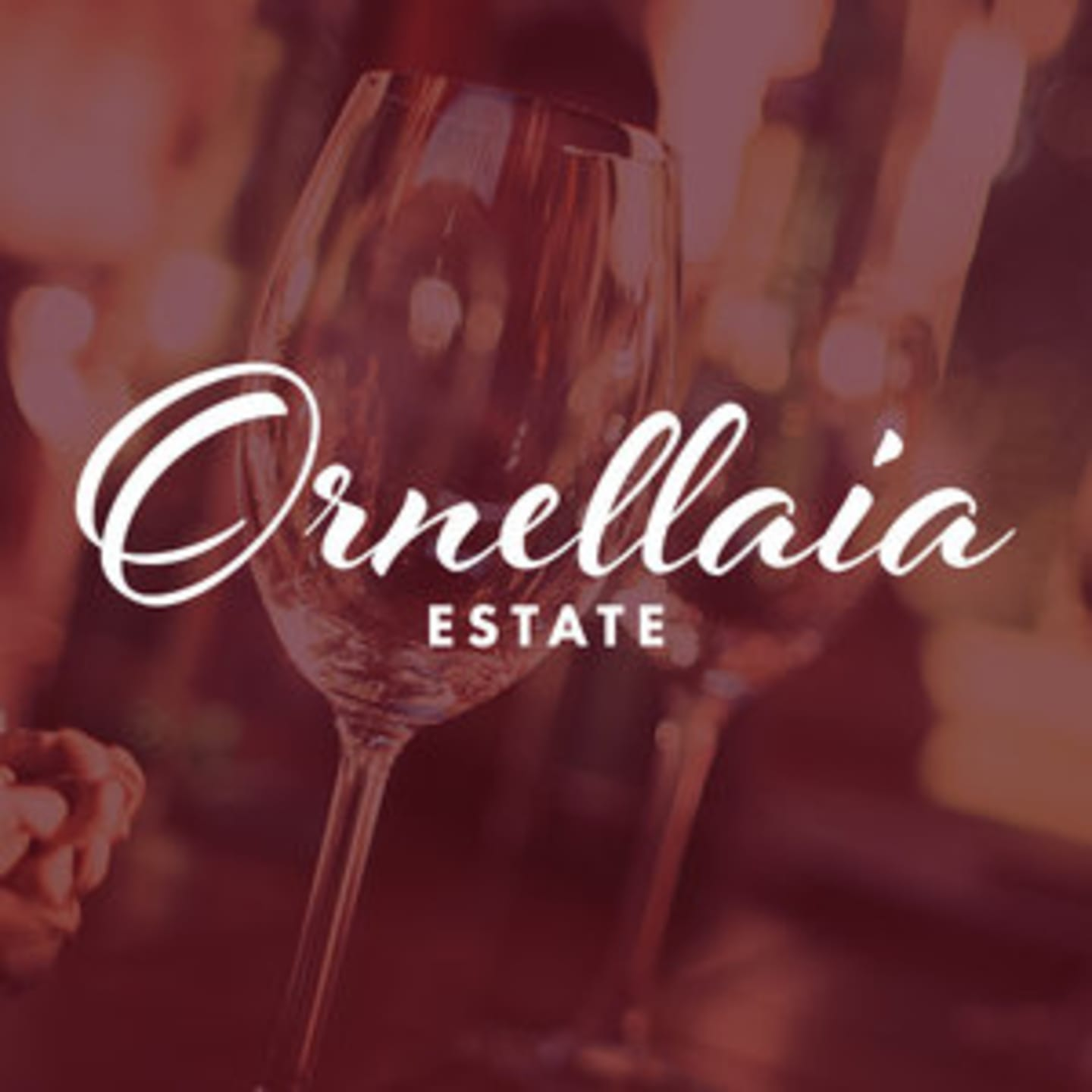 JUNE 13 | ORNELLAIA ESTATE