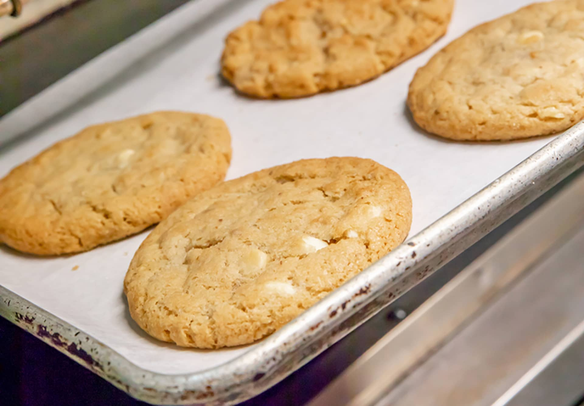 White Chocolate Walnut Cookie