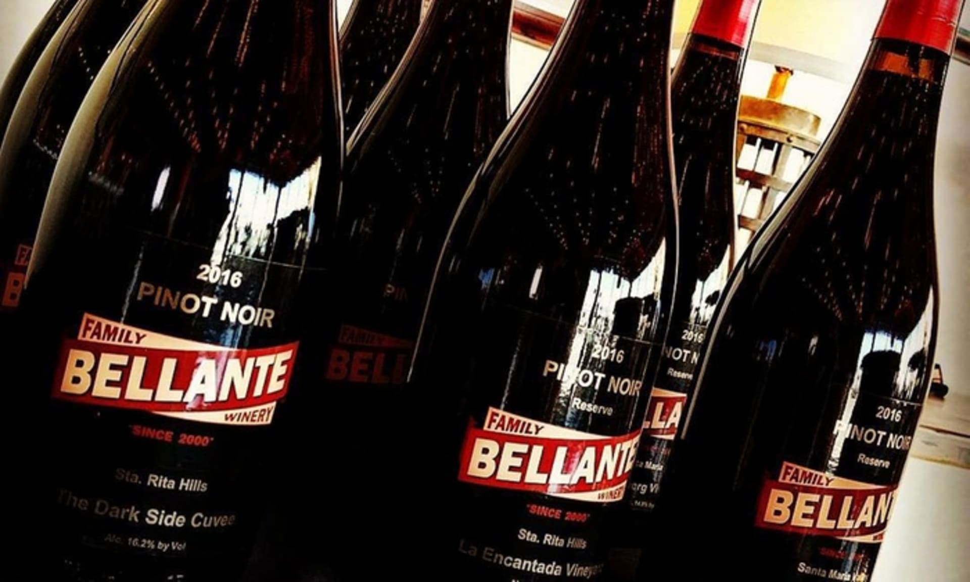 NOV 8 | BELLANTE FAMILY WINERY
