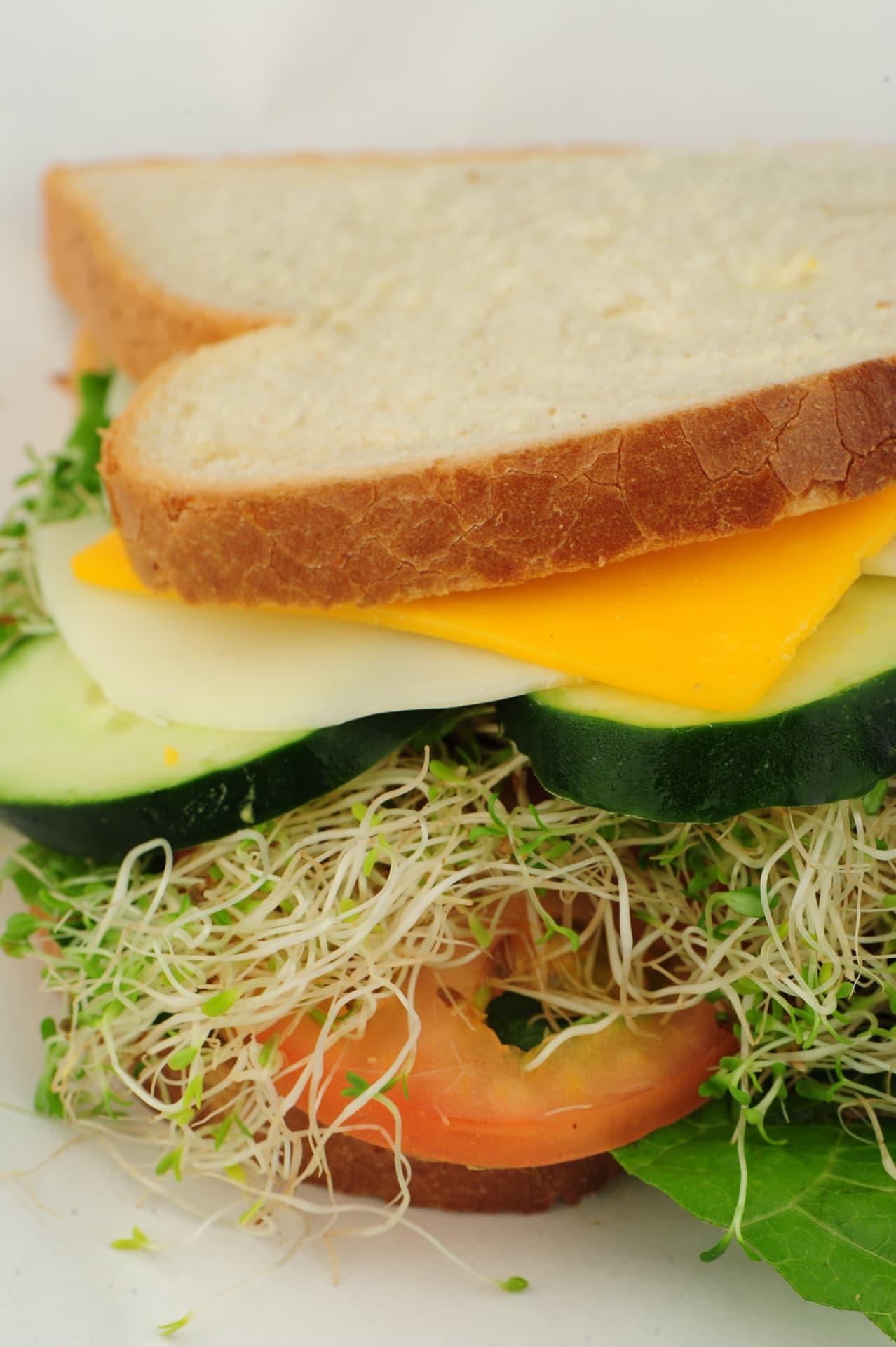 Nature Sandwich