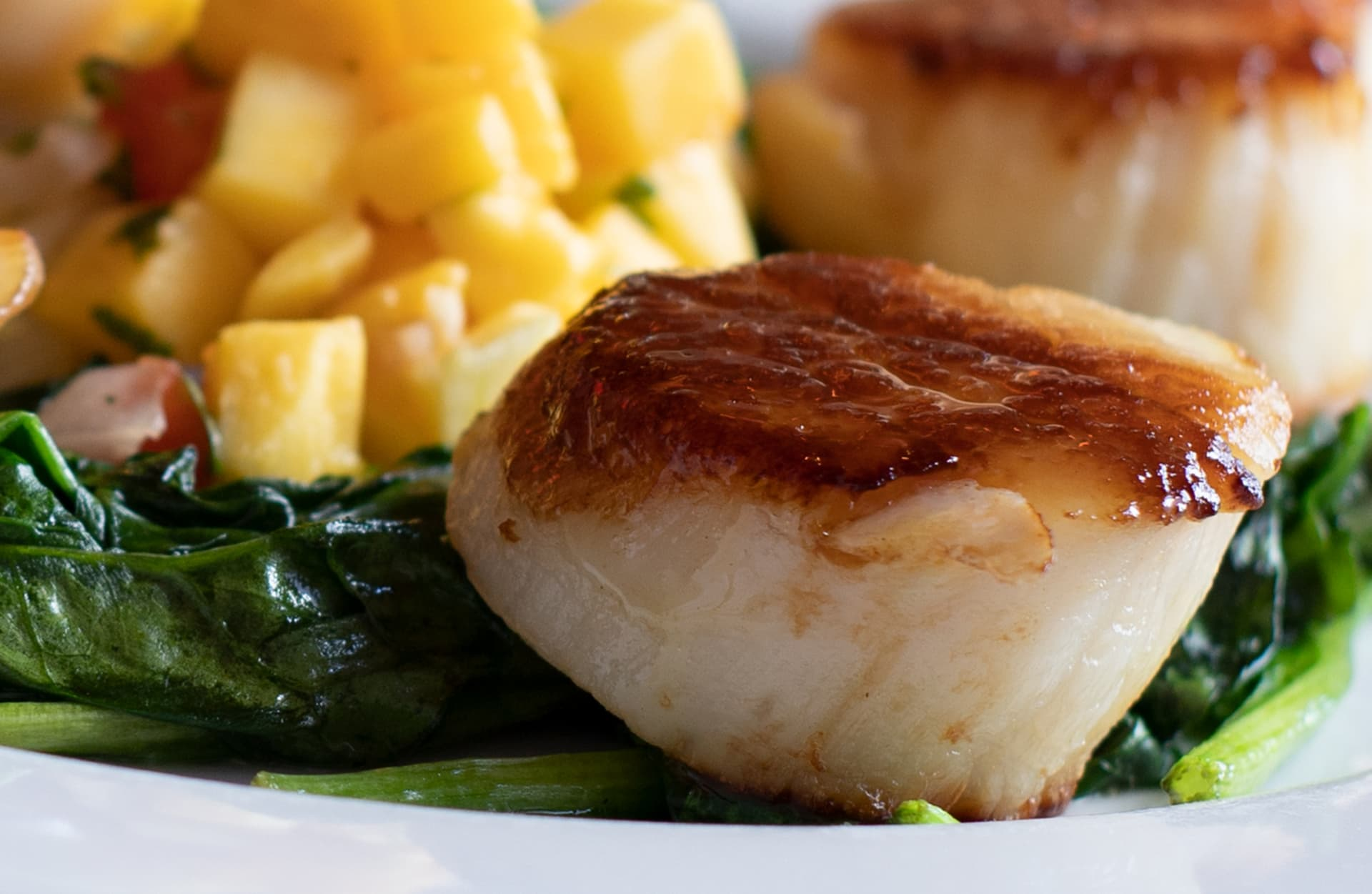 Seared Eastern Sea Scallops