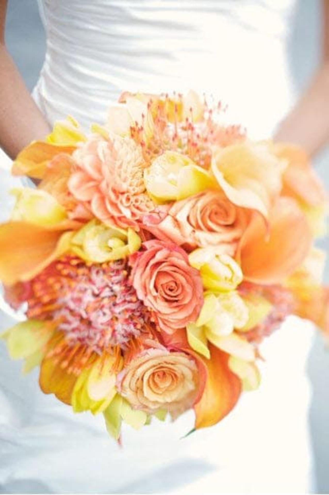Alden Park Bridal Expo