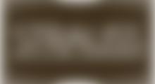 stauss logo