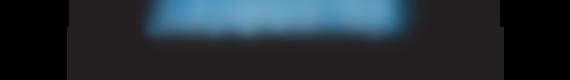 leominster champion logo