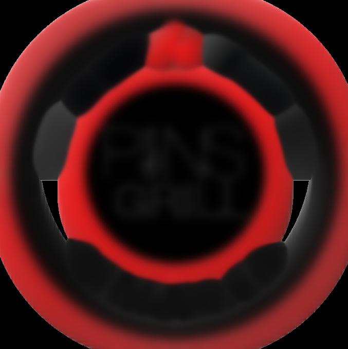 pins grill restaurant logo