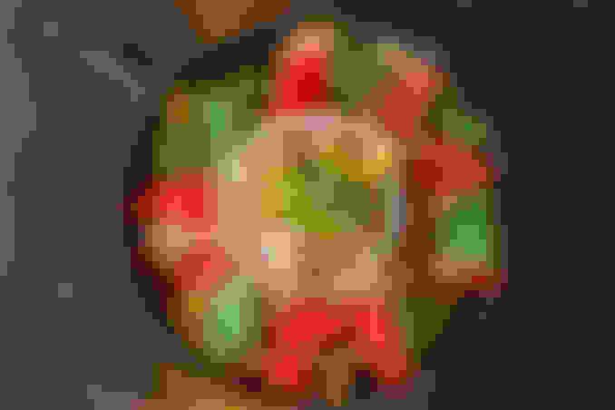 Ceviche Dip