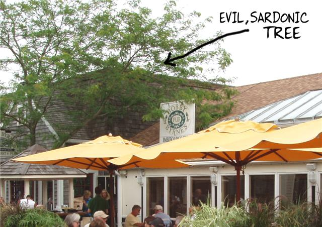Building with tree and a caption saying 'evil, sardonic tree'