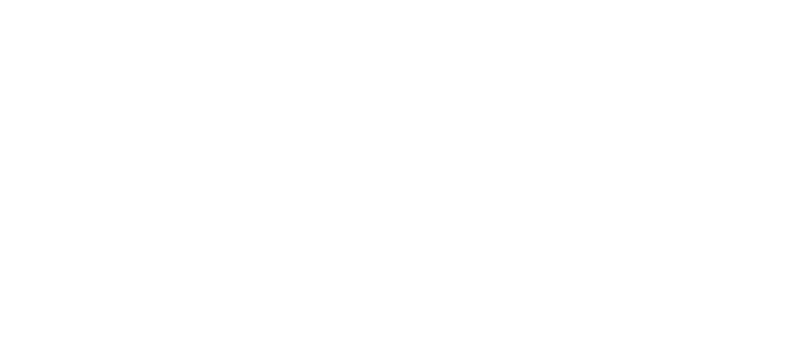 chownow logo
