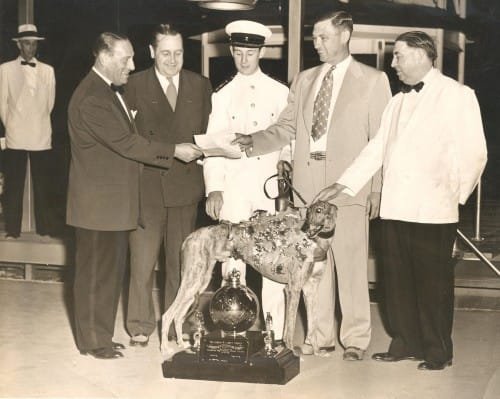 American Greyhound Derby at the Taunton Dog Track