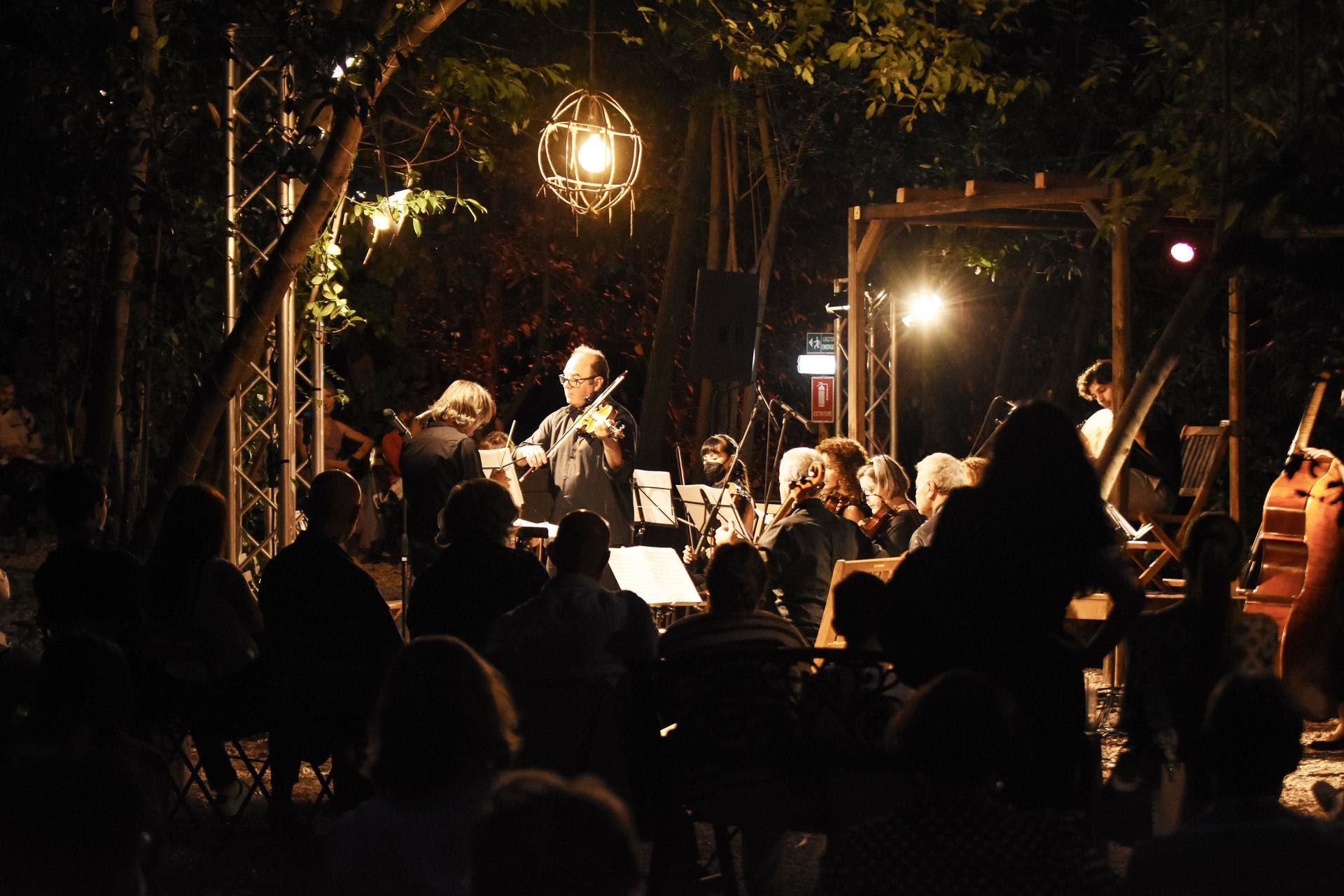 Dentro il bosco del WOOD il nuovo concerto del progetto VIVALDI DIRIGE VIVALDI