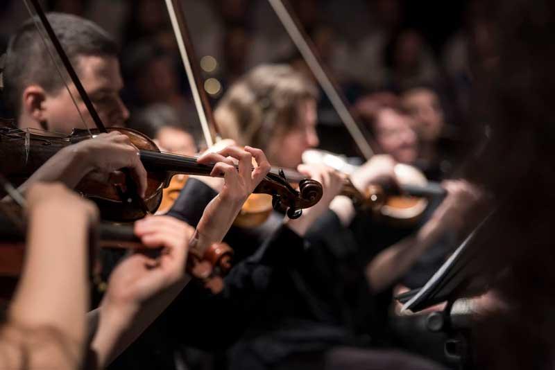 O violino ou violinada é um termo bastante comum no universo trader.
