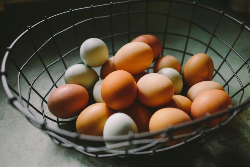 Não coloque todos os ovos na mesma cesta. Essa famosa frase entre os investidores faz referência ao princípio da diversificação