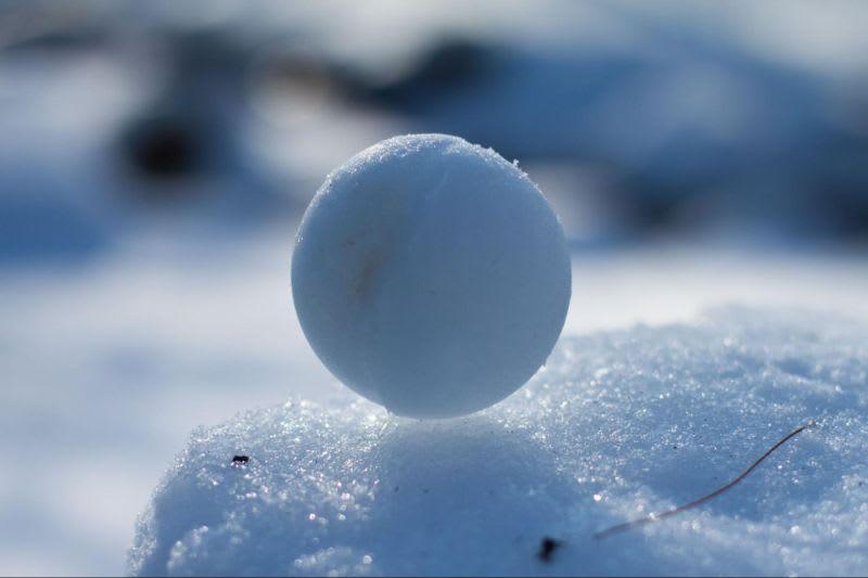 Reinvestir seus dividendos pode ser uma ótima estratégia para conseguir o tão esperado efeito bola de neve