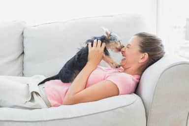 Pet friendly spaces in your home