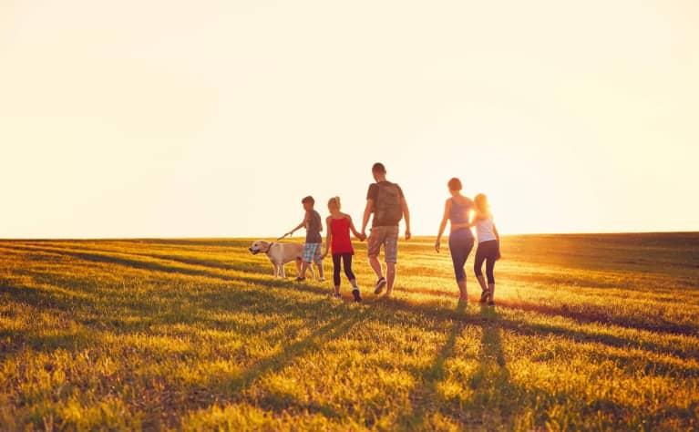 The advantages of acreage