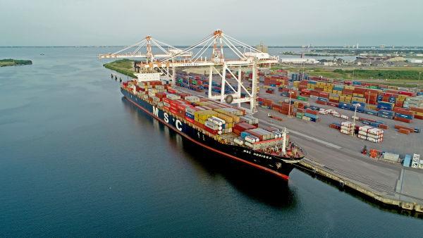 Port Tampa Bay Cranes
