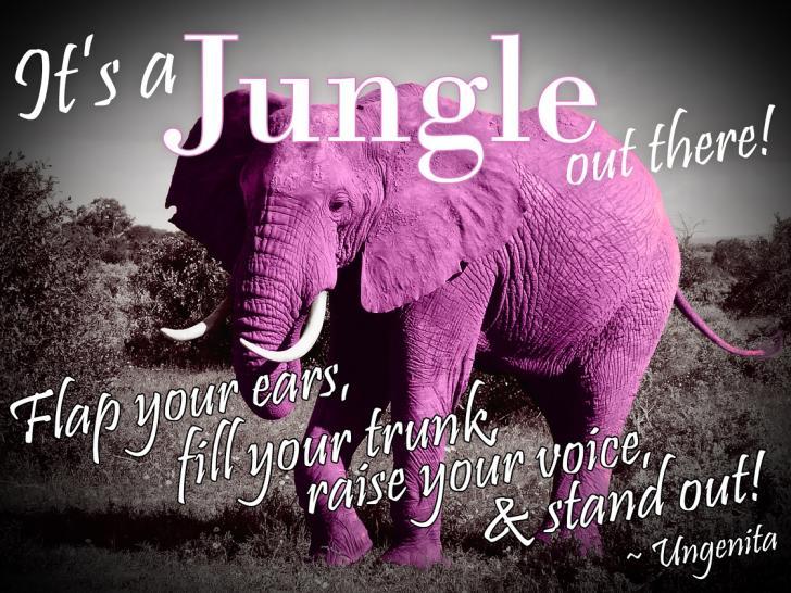 146842828400Pink-Elephant.jpg.jpg