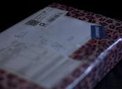 Correos ya no entregará despachos a domicilio por compras en Internet