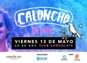 Caloncho en Chile