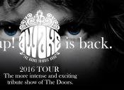 AWAKE is back. 2016 Tour, Goodstock Bar