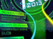 Año Nuevo Wild Tour 2013