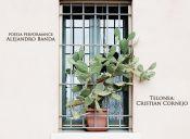 Cactus Andante en La Vela Bar, Valparaíso