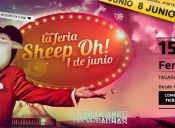 Fiesta SHEEP OH